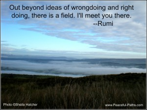 Out beyond ideas of wrongdoing